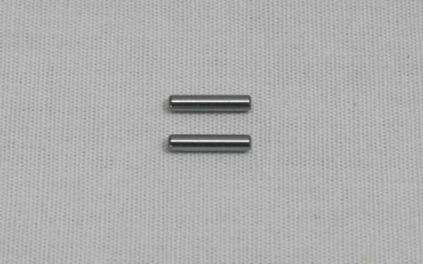 Ø2x10mm Pin (2 Stück)